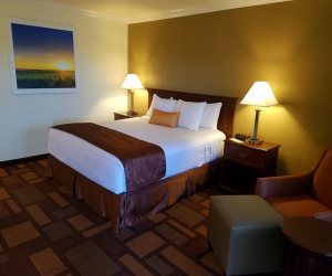 Days Inn & Suites Lodi - Guest Room with 1 King Bed