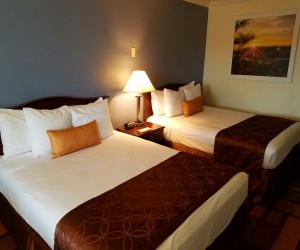 Days Inn & Suites Lodi - Guest Room with 2 Queen Beds